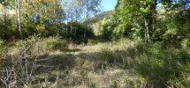 Terrain pour jardin potager ou d'agrément – T1608 – ST JULIEN EN BEAUCHENE