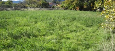 Terrain agricole – T1526